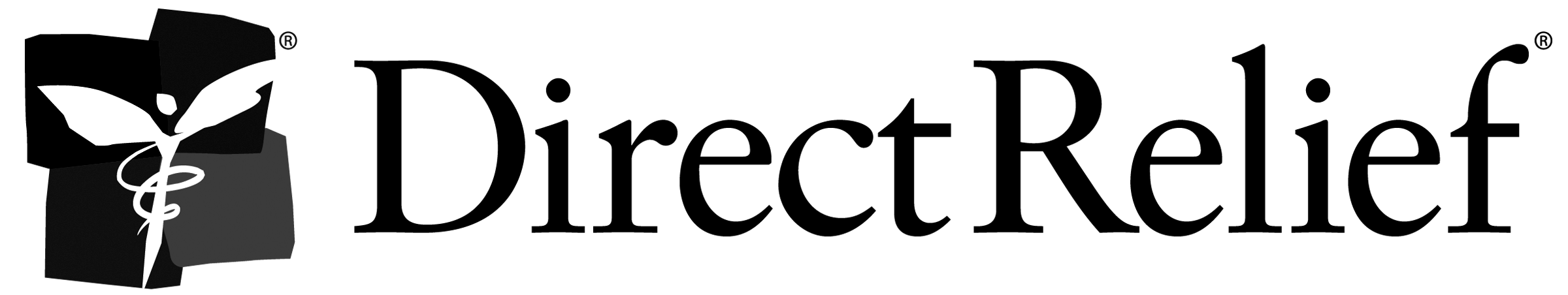 DR_Logo_notag_CMYK_2400x452